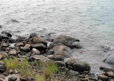 PaB Water shoreline