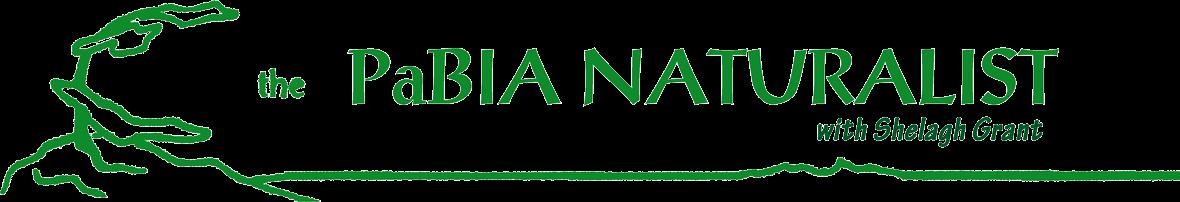 Pabia Naturalist Title