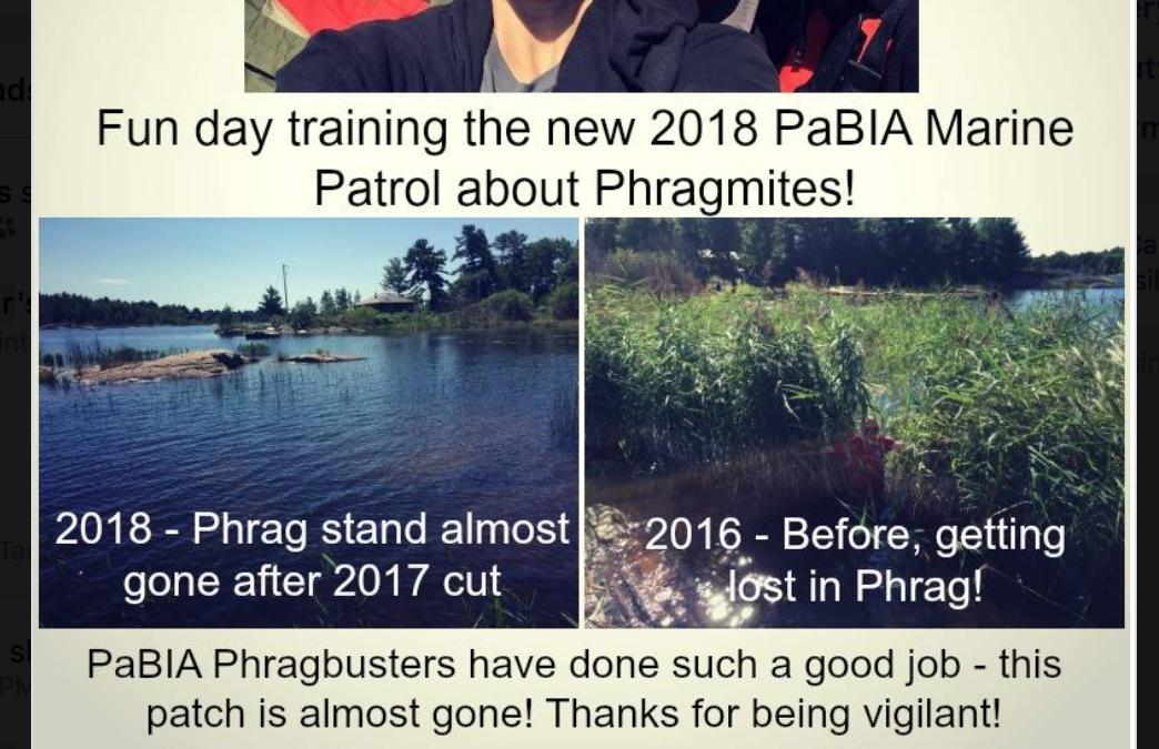 2018 Marine Patrol Phragmites Training